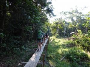 101 0074 Peru - Iquitos - Weg zu Arco Iris