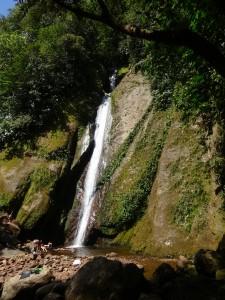 104 0062 Peru - Tarapoto - Shilcayo Reserva