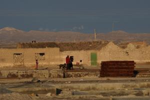 112 0263 Chile - Atacama Tour - Colchani