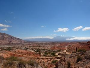 128 0085 Argentina - Fahrt nach Salta - PN Los Cardones