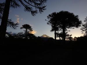 144 0095 Chile - Curacautin - PN Conguillo - Lago Acroiris