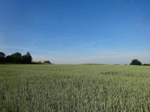 180604 Gemeinde Dägerlen 01