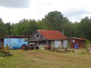 164 0059 Chile - San José de la Mariquina - Farm Peter
