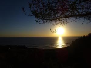164 0254 Chile - San José de la Mariquina - Misisipi bis Chan Chan