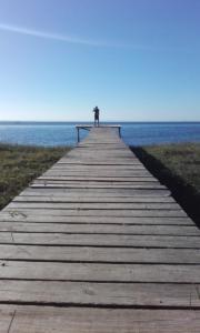 174 0037 Uruguay - La Paloma - Laguna Rocha