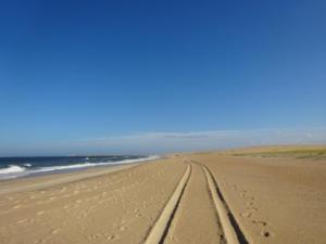 175 0115 Uruguay - Cabo Polonio