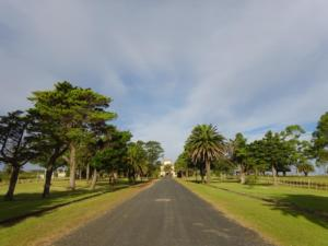 182 0064 Uruguay - Piriapolis - Castillo de Piria